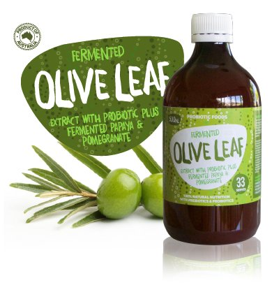 how to take olive leaf extract liquid