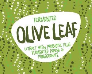 Fermented Olive Leaf